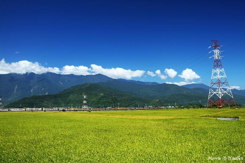 花東縱谷的稻香味 (12)