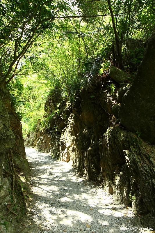 砂卡噹步道 (52)