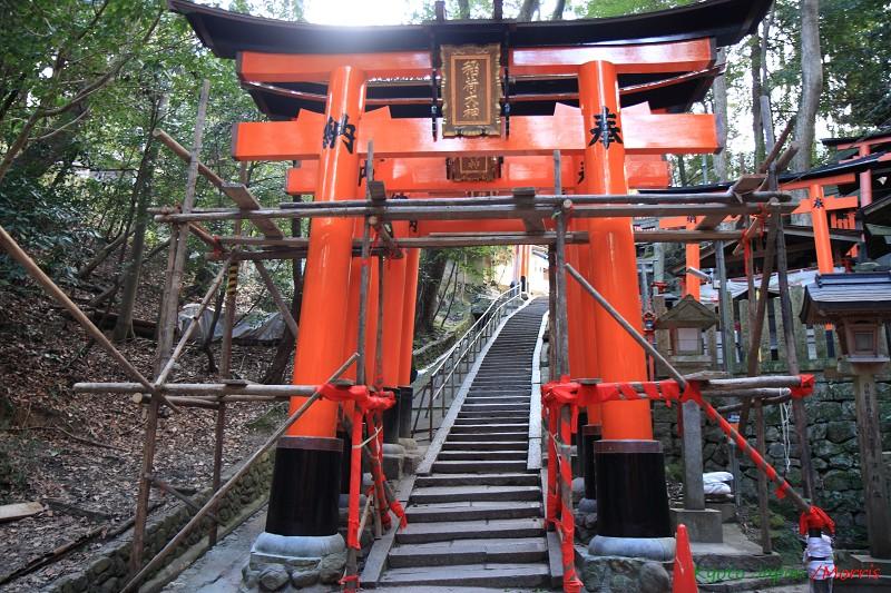 伏見稻荷神社 (20)