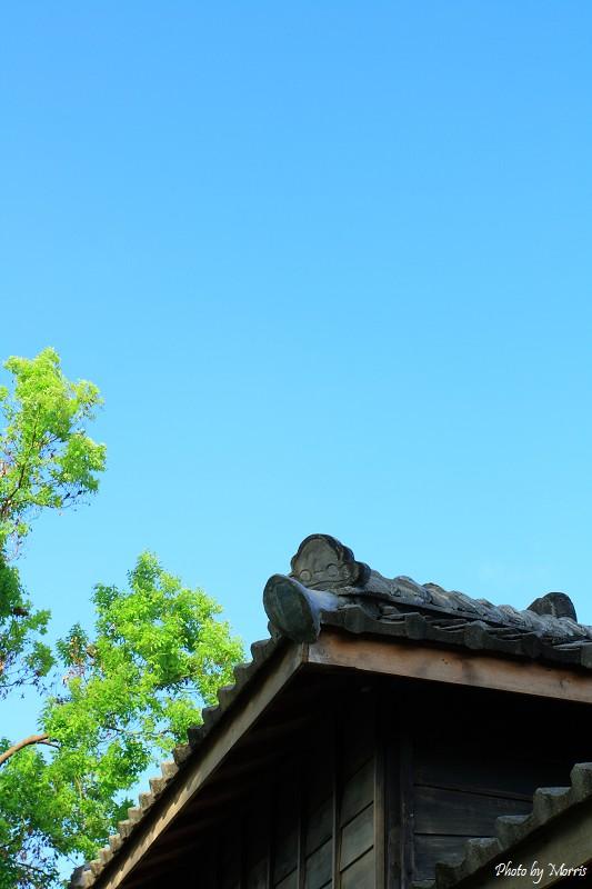 菁華街尋舊日式房舍 (07)