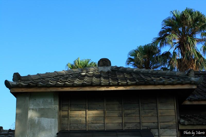 菁華街尋舊日式房舍 (10)