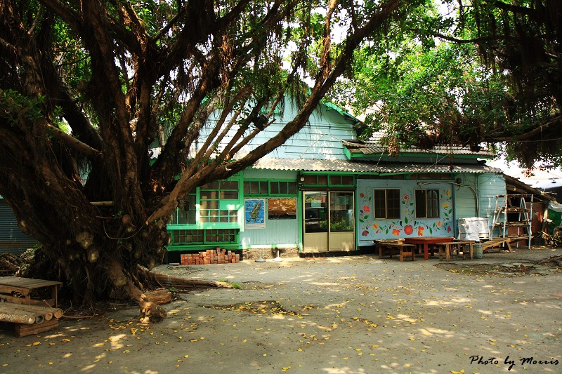 台西‧漫步彩色漁村 (77)