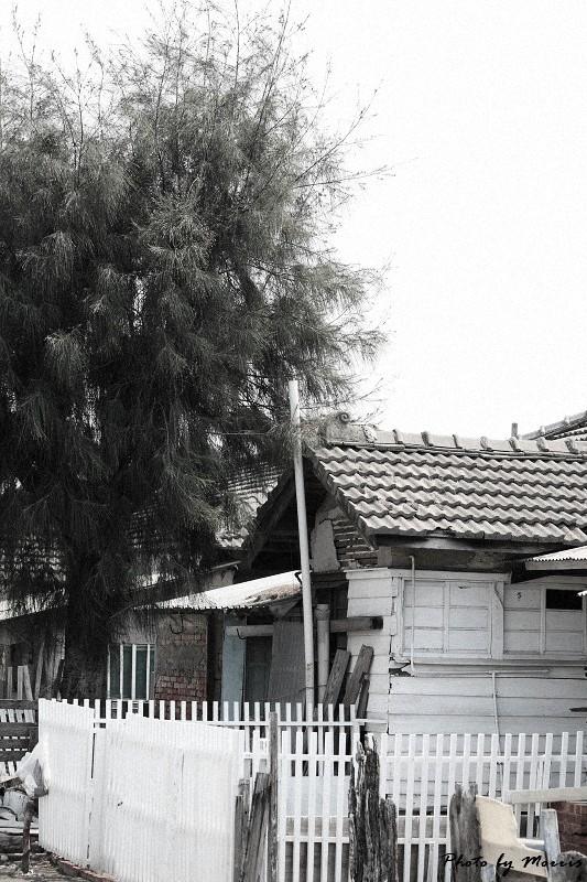 消失的台鹼宿舍 (50)