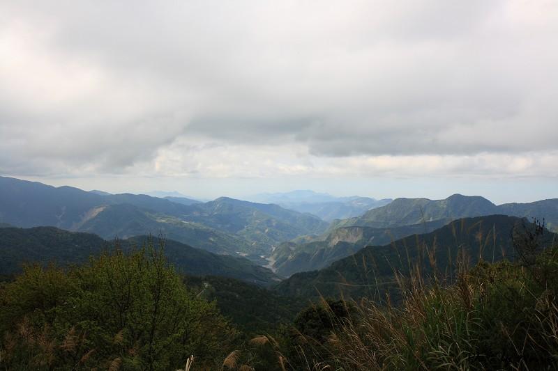 2010阿里山櫻花季 (46)
