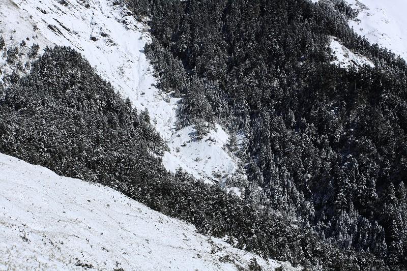 合歡山冬雪前奏曲 (63)