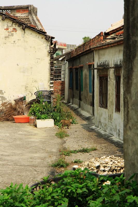 台西‧漫步彩色漁村 (67)