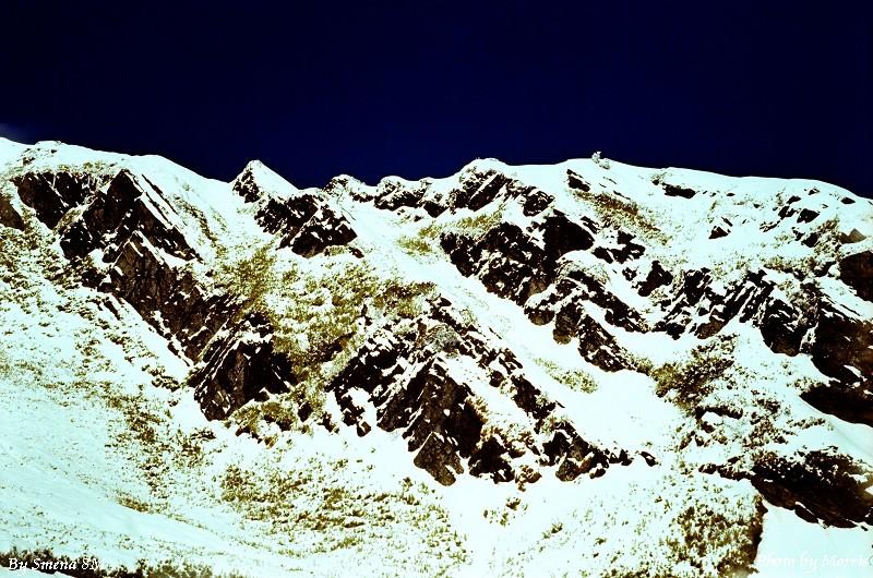 合歡山冬雪 (11)