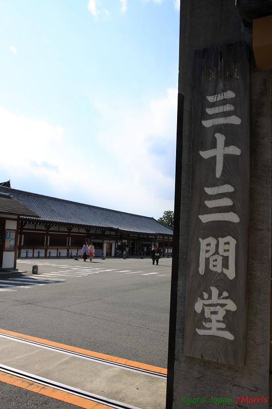京都初心 Day 6 (7)