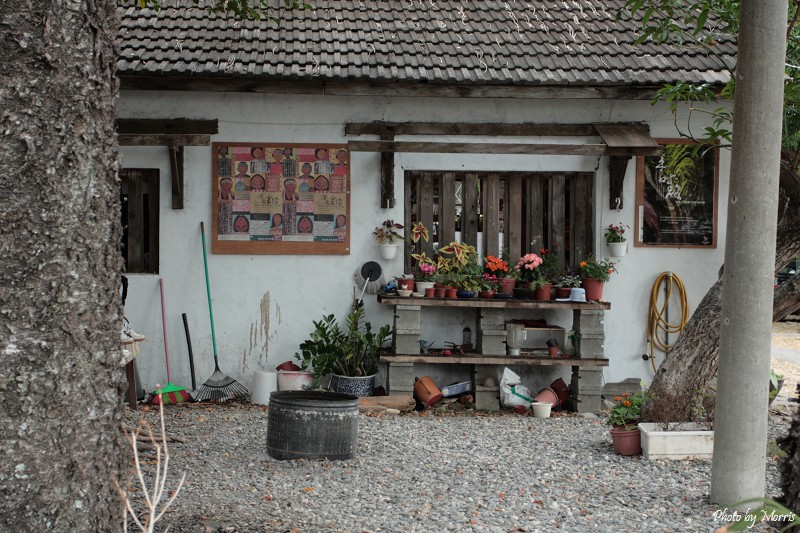 都蘭小廚房 (44)
