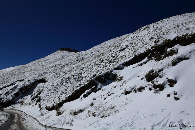 合歡山冬雪前奏曲 (55)