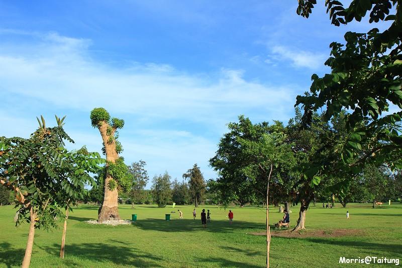 台東森林公園 (1)