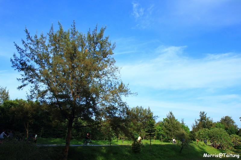 台東森林公園 (2)