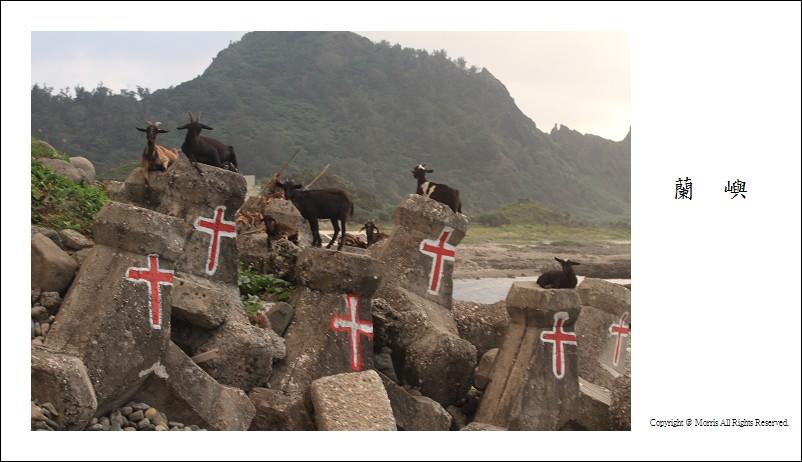 山羊的國度 (28)