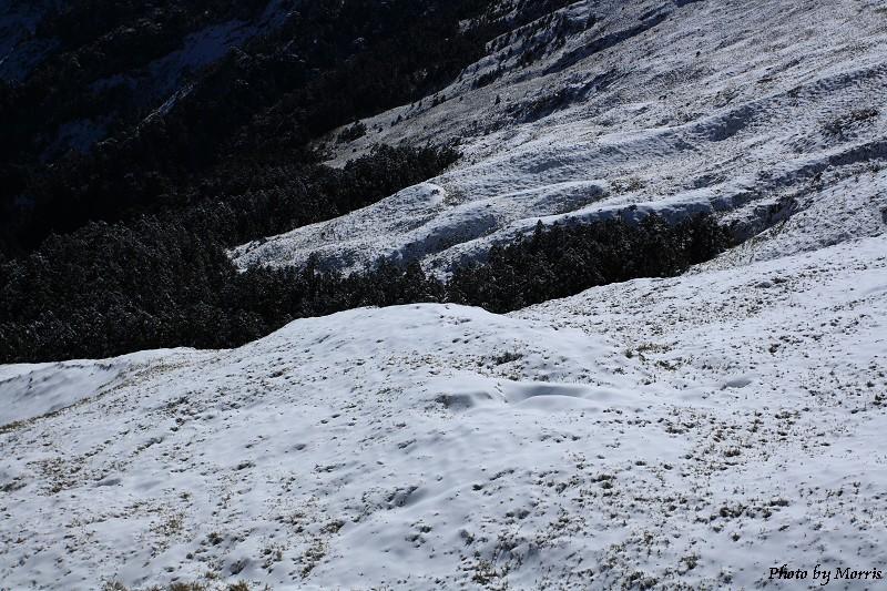 合歡山冬雪二部曲 (36)