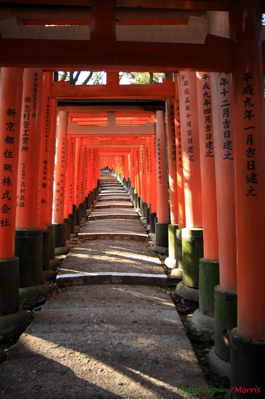 伏見稻荷神社 (67)