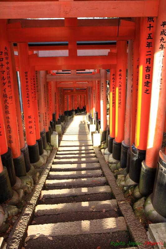 伏見稻荷神社 (58)