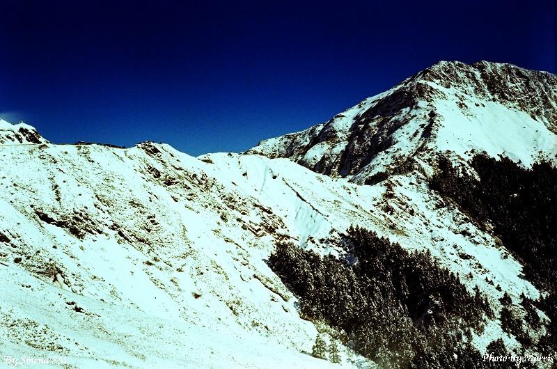 合歡山冬雪 (5)