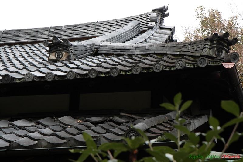 京都初心 Day 3 (7)