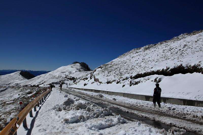 合歡山冬雪前奏曲 (69)