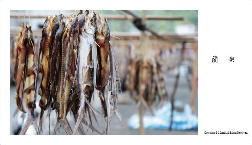 飛魚季 (06)