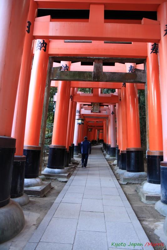 伏見稻荷神社 (4)