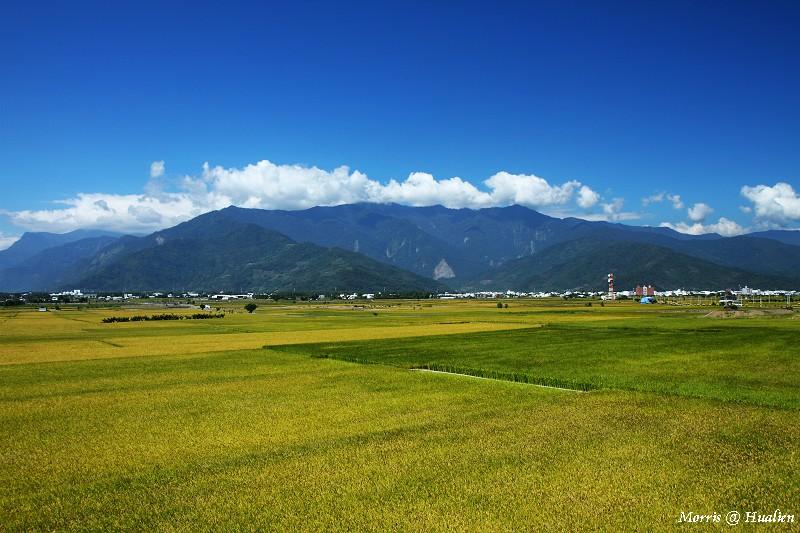 花東縱谷的稻香味 (19)