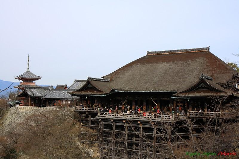 京都初心 Day 2 (6)