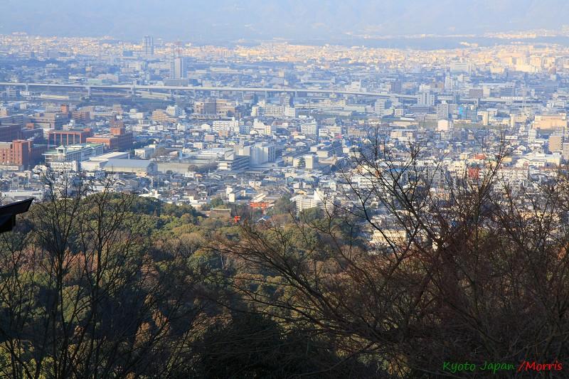 伏見稻荷神社 (35)