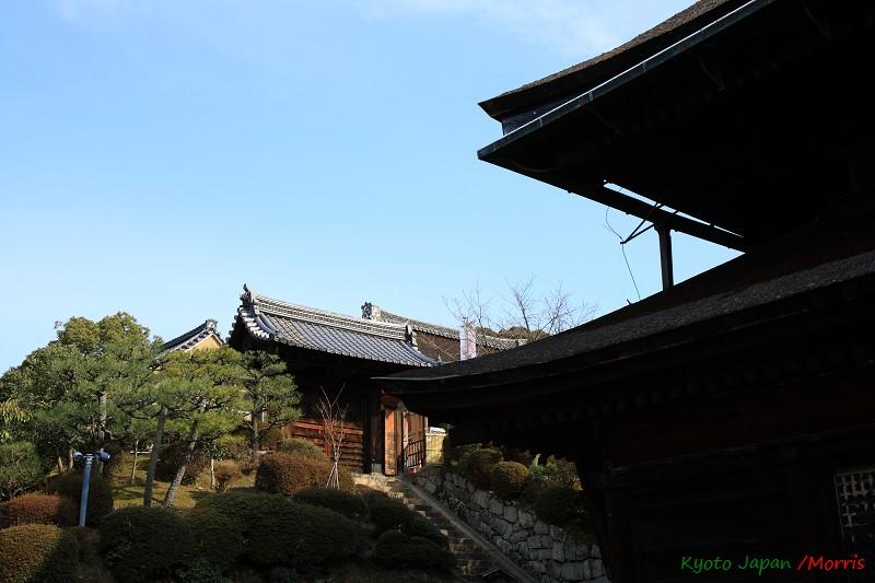 清水寺 (18)