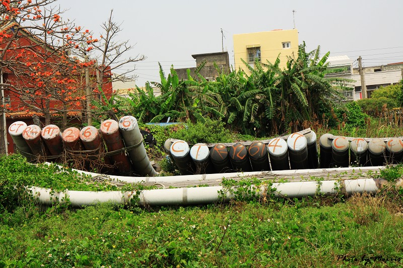 台西‧漫步彩色漁村 (20)