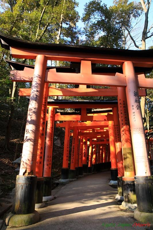 伏見稻荷神社 (65)