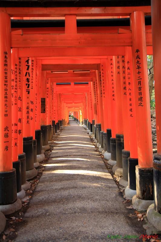 伏見稻荷神社 (66)