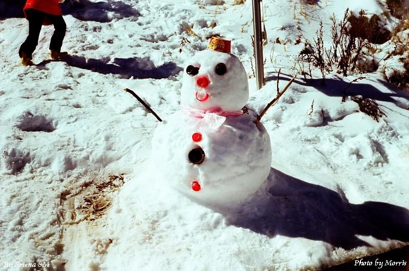 合歡山冬雪 (2)