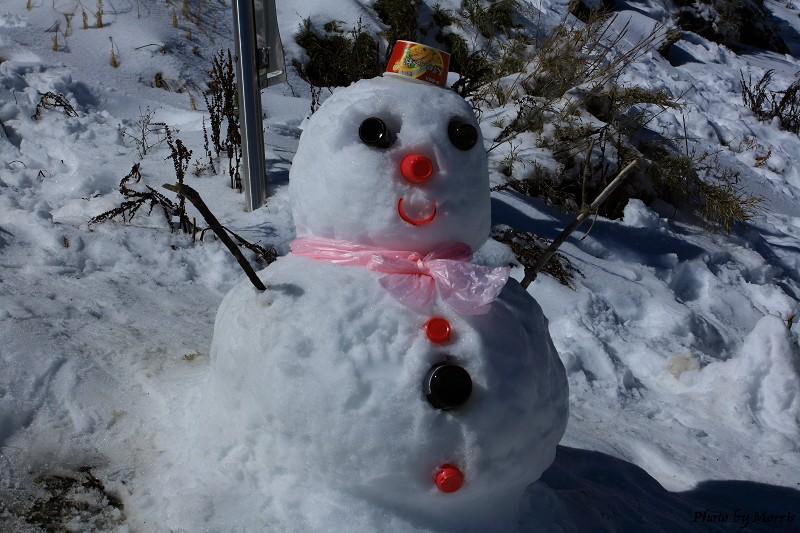 合歡山冬雪前奏曲 (29)