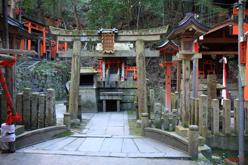 伏見稻荷神社 (21)