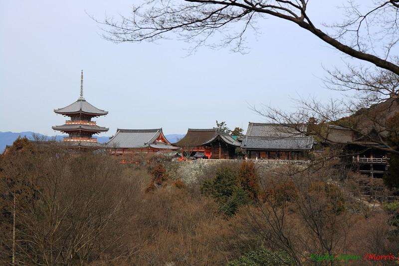 清水寺 (48)