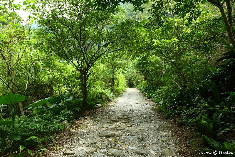 砂卡噹步道 (49)