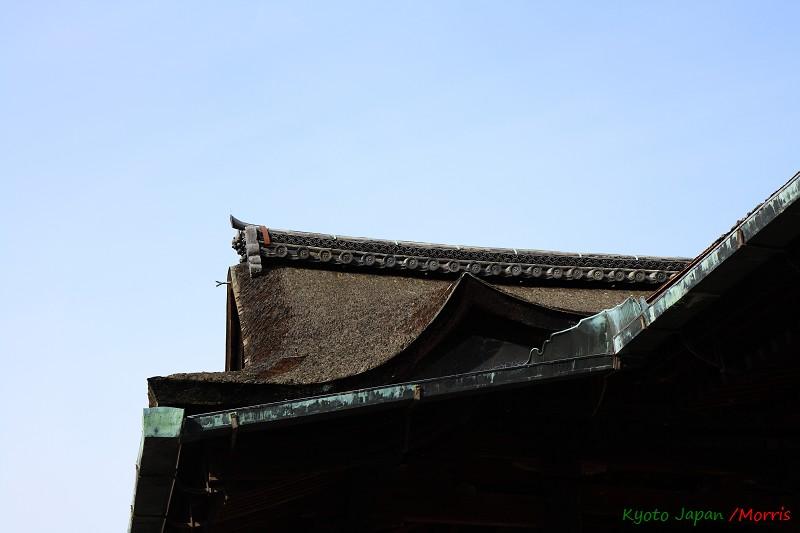 清水寺 (21)