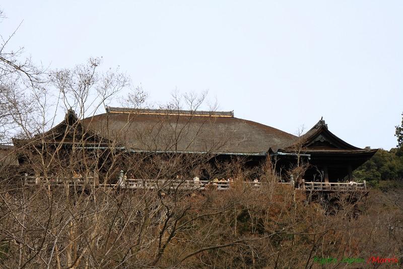 清水寺 (54)