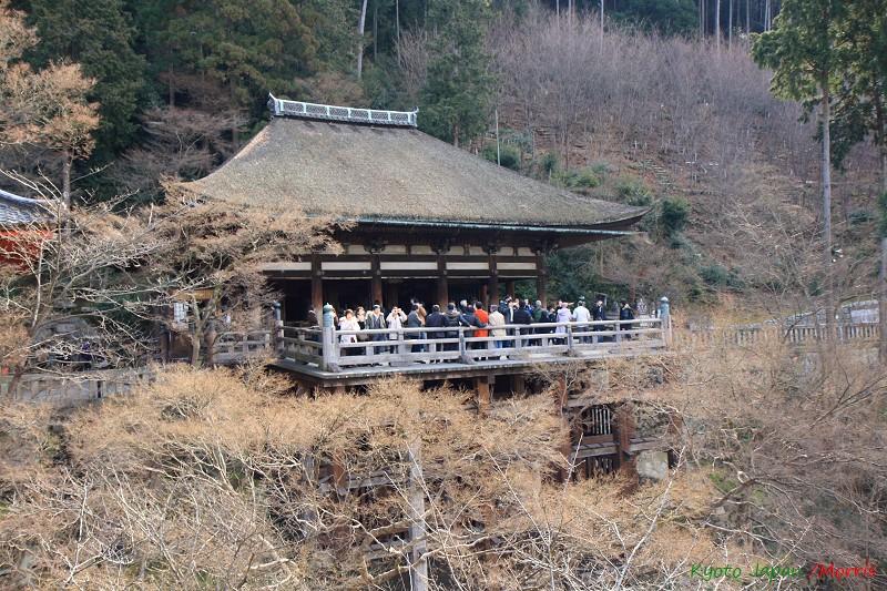 京都初心 Day 2 (4)