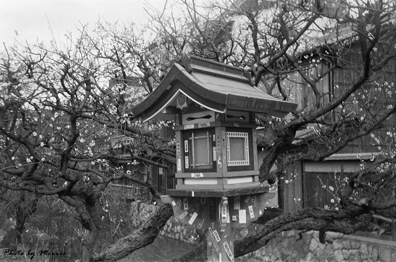 京都黑白照 (27)