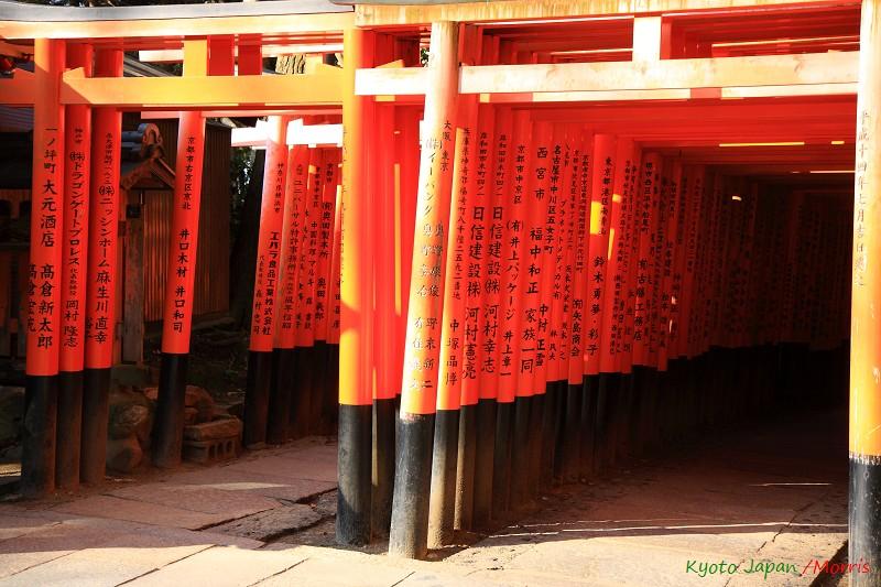 伏見稻荷神社 (70)