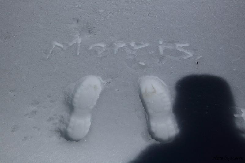 合歡山冬雪二部曲 (37)