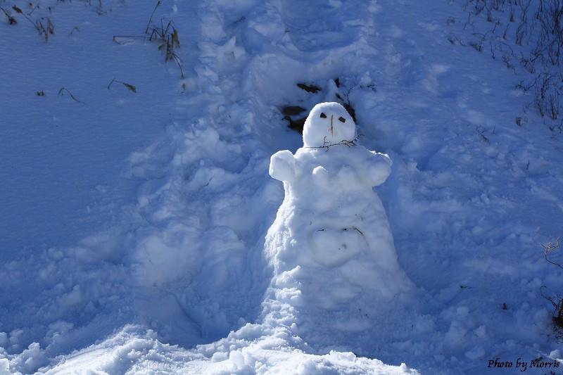 合歡山冬雪二部曲 (59)