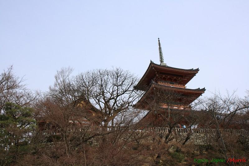 清水寺 (62)