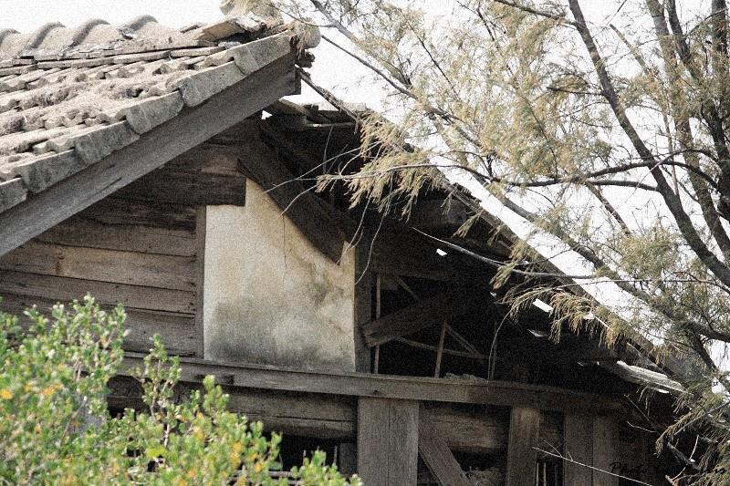 消失的台鹼宿舍 (28)