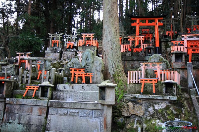 伏見稻荷神社 (41)