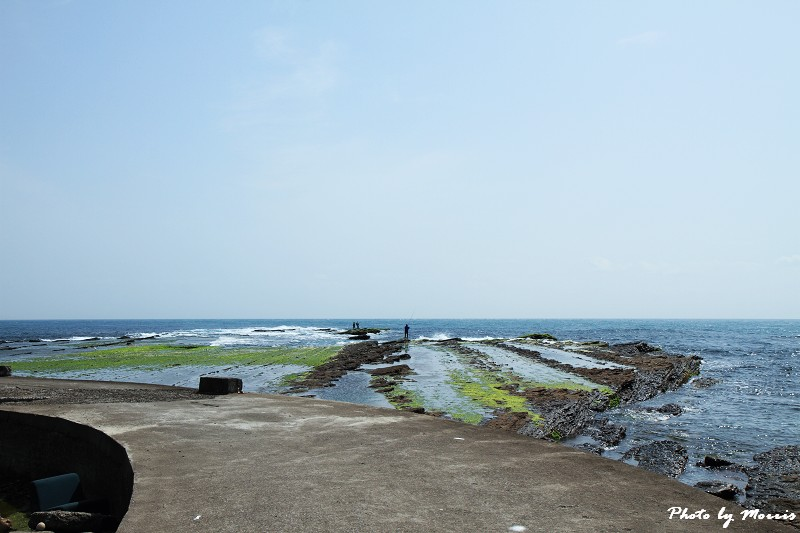 馬崗漁港拍貓看海