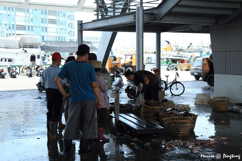 漫遊東港漁港&漁市 (14)