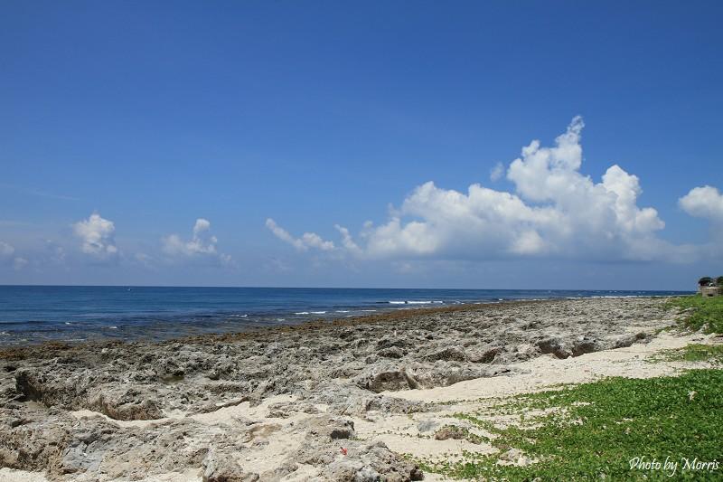 厚石群礁 (9)